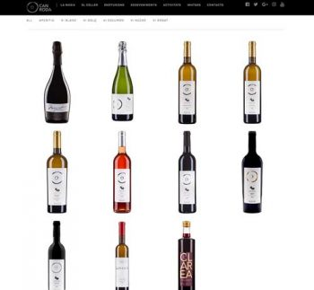 Web especializada en vinos
